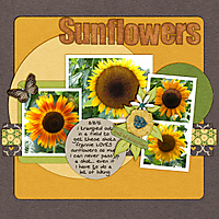 sunflowerspreview200.jpg