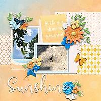 sunshinein-copy.jpg