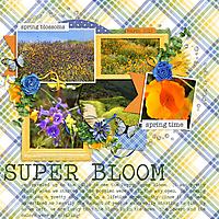 superbloomweb.jpg