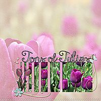 tons-of-tulips.jpg
