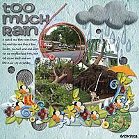 too_much_rain_copy.jpg