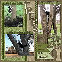 trees_MFish_PFAllLinedUp_02_sml.jpg