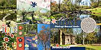 web_2017_43_October20_BotanicalGarden_LG_Forestier_SwL_MixitUp19_14_TLP_NovPhotoChallenge.jpg