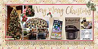 web_2017_52_December25_SwL_DecemberinReviewTemplate1.jpg