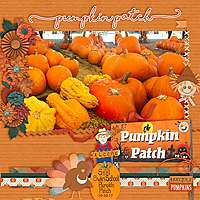 webpumpkin-patch.jpg