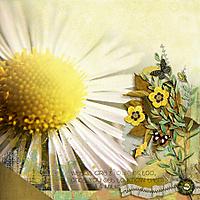 weeds_lily.jpg