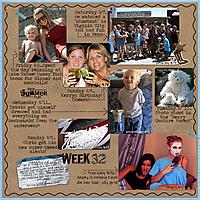 week-32-web.jpg