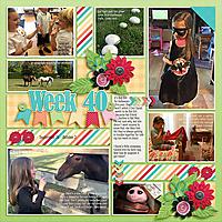 week40_GS-Selfie_Pocketful12_-web.jpg
