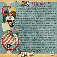 week_5-6.jpg