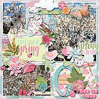 wendyp-glee-mmullens-First-bloom.jpg