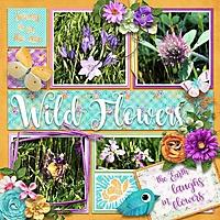wildflowers6.jpg