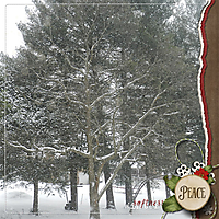 winter_s_softness_small.jpg