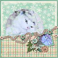 winterbliss_kpm1.jpg