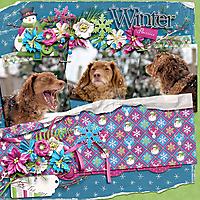 winterflurries-copy.jpg