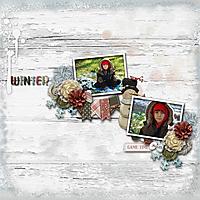 winteril20.jpg
