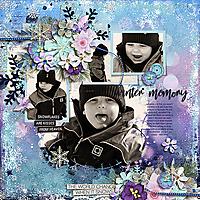 wintermemoryF600.jpg