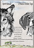 wolf-dog.jpg