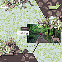 woods-walk.jpg