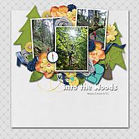 woods20.jpg