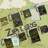 zipline-web.jpg