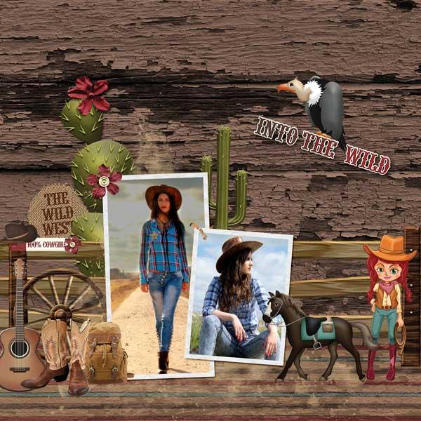 Wonderful Wild West