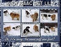 when-isaac-met-lily.jpg