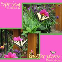 Spring-Butterflies-web.jpg