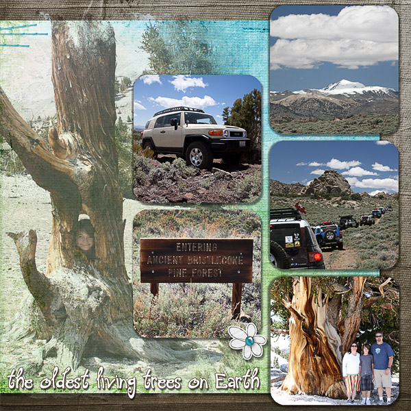White Mountains page 2