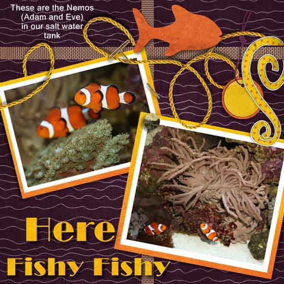 Here, Fishy fishy