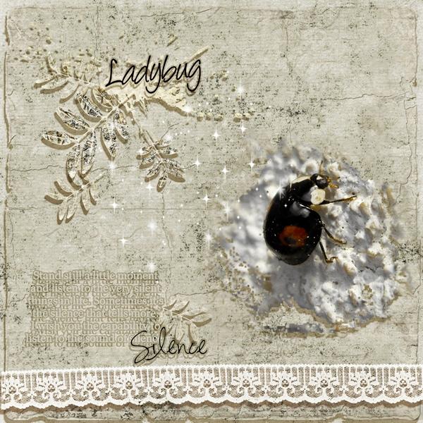 Black LadyBug