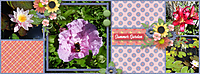 1_BnP_Summers_Eve_03_chrislayout1_cover_web.jpg