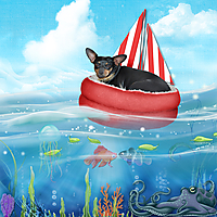 ChiqiSailboat-copy.jpg