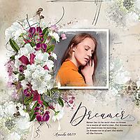 Dreamer-TiramisuDesignBeautifulSilence.jpg