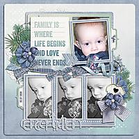 Family-is-where-life-begins-kkMidwinterMorning.jpg