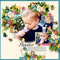 Flower-for-Gran-JSDALoveLikeOurs-HeartstringsArtPicturePerfect.jpg