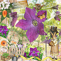 Home-Garden_ollitko.jpg