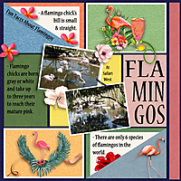 PD_FlamingoWorld_jojores_01.jpg