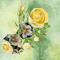 Roses14.jpg
