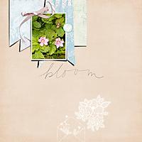 bloom34.jpg