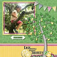 cdd_dd_Lexi_tree.jpg