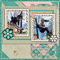 cdd_mini_Flying_on_swings.jpg
