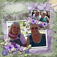 pbs_LavenderFields_jojores_01.jpg