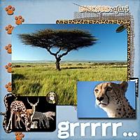 Backyard-Safari-6J.jpg