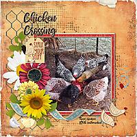 Chicken-Crossing.jpg