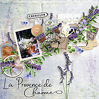 La-Provence-de-Charmes-IndigoDesignsByAnnaLaVieEstBelle.jpg