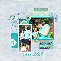 Perfect_Harmonyb.jpg
