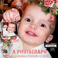 Photograph---pause-button-of-life-pbpSnapshots_1.jpg