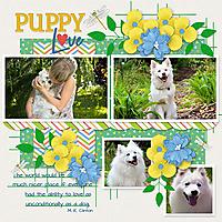 Puppy-Love16.jpg