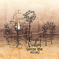 Seize-The-Wine.jpg