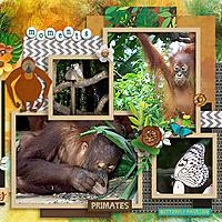 Singapore-Zoo-right-600.jpg